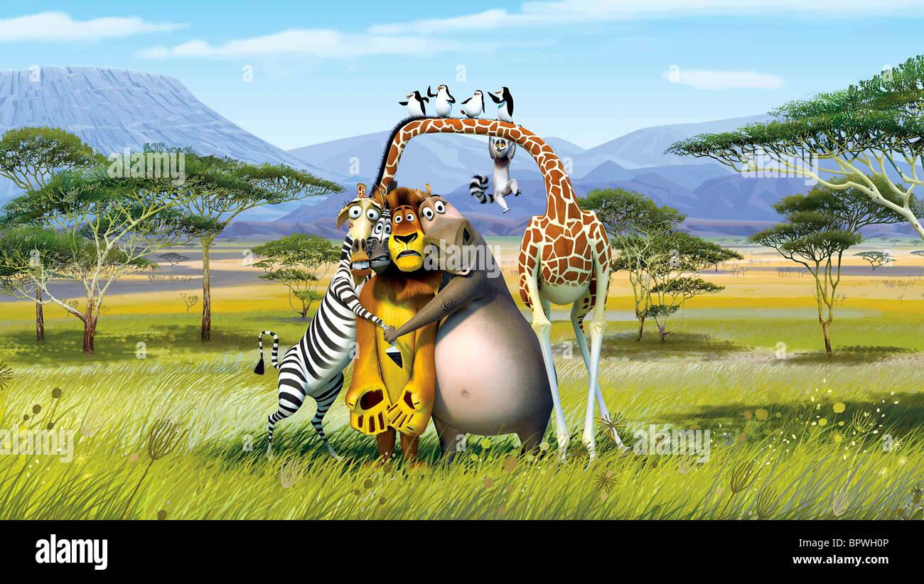 Uncategorized Madagascar Zebra melman marty the zebra alex lion gloria hippo king julien crate escape