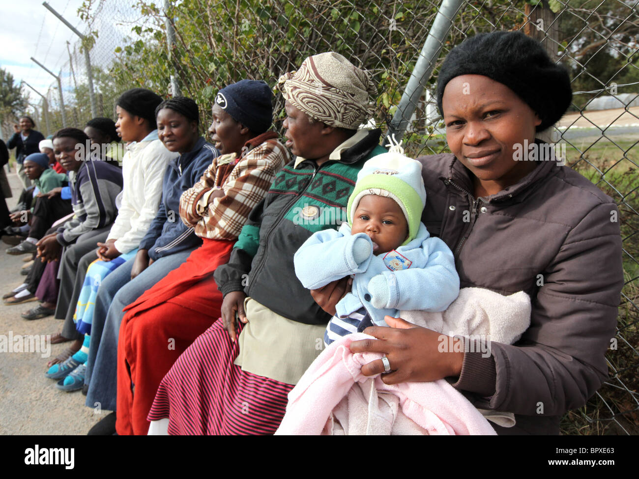 zimbabwean refugees in south africa Africa check asked south africa's department of home affairs and the zimbabwe consulate in pretoria for data on the numbers of people crossing the border from zimbabwe to south africa before and after the elections and the number of documented and undocumented zimbabweans living in south africa.