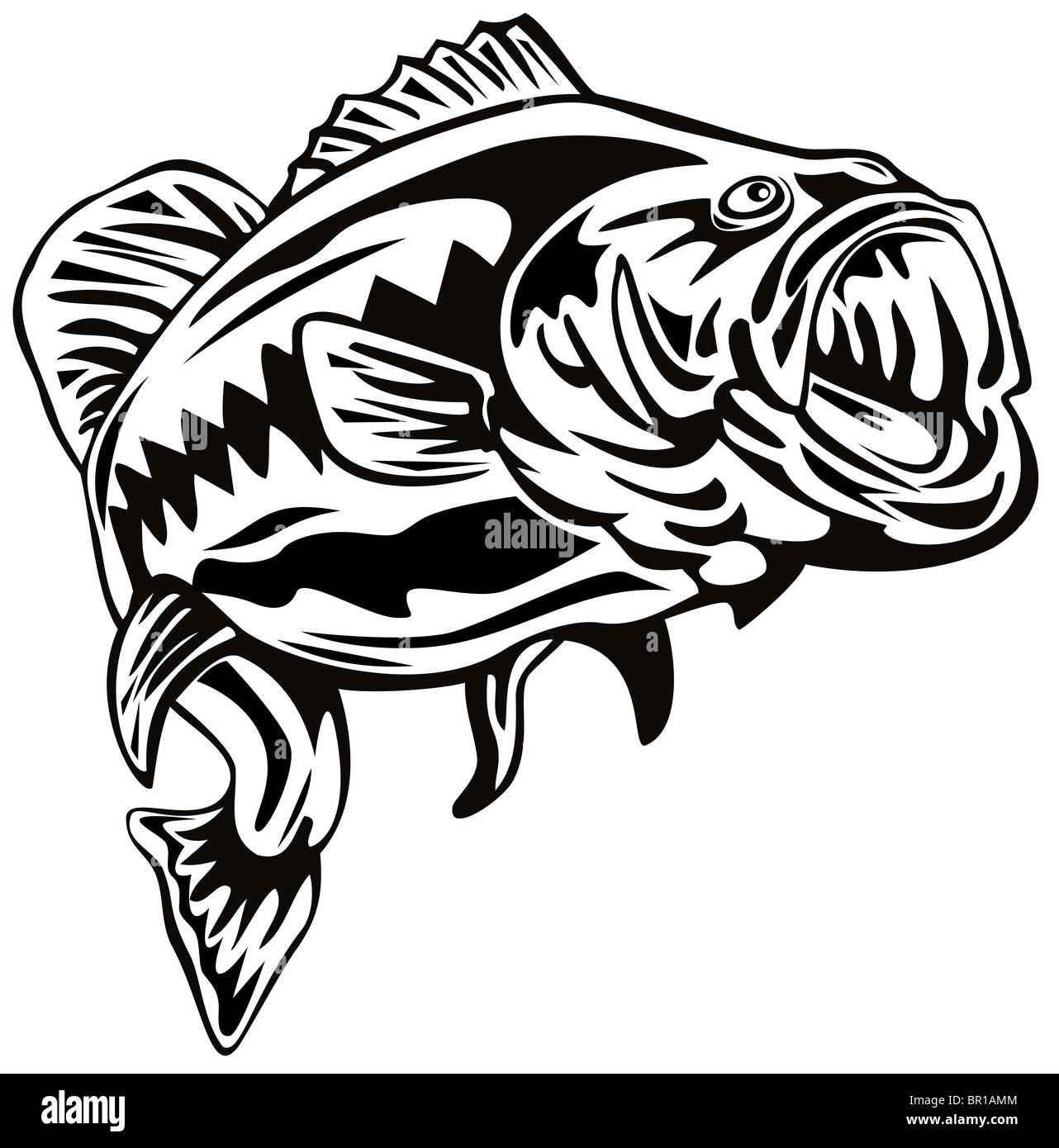 Retro Woodcut Style Illustration Of A Largemouth Bass Fish Jumping On Isolated White Background