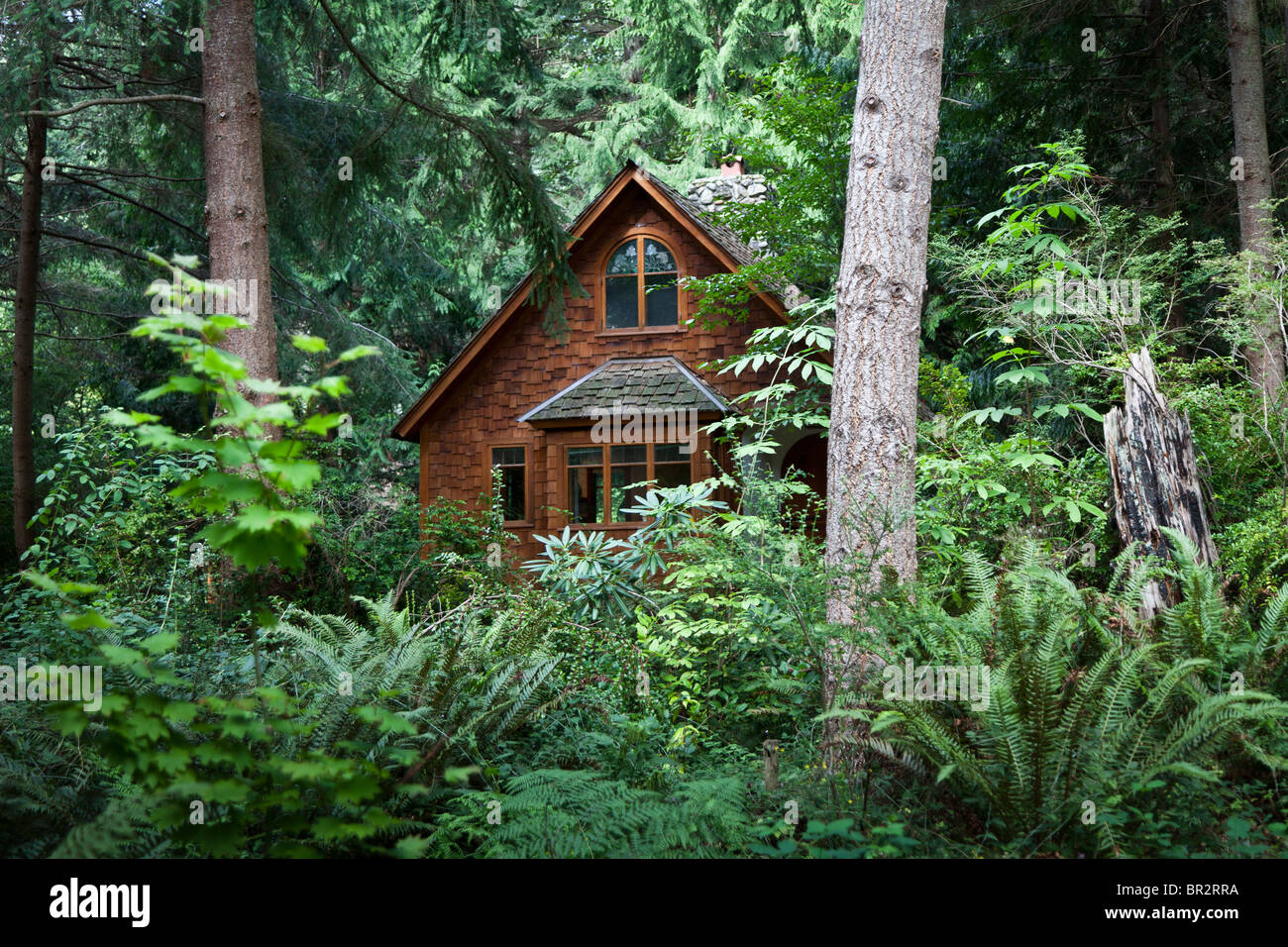 Woodland cottage at hedgebrook writer 39 s retreat whidbey for Writers retreat cabin