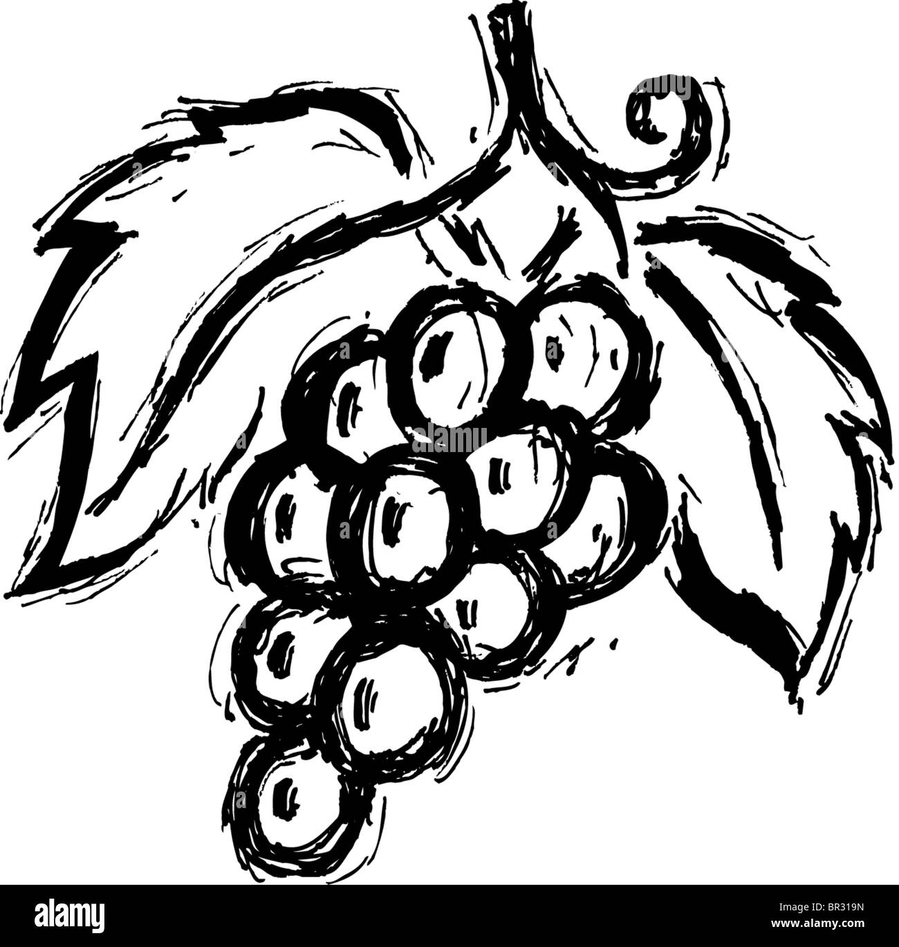 grapes clipart black and white. bunches of grapes cartoon illustration; a black and white drawing bunch - stock photo clipart
