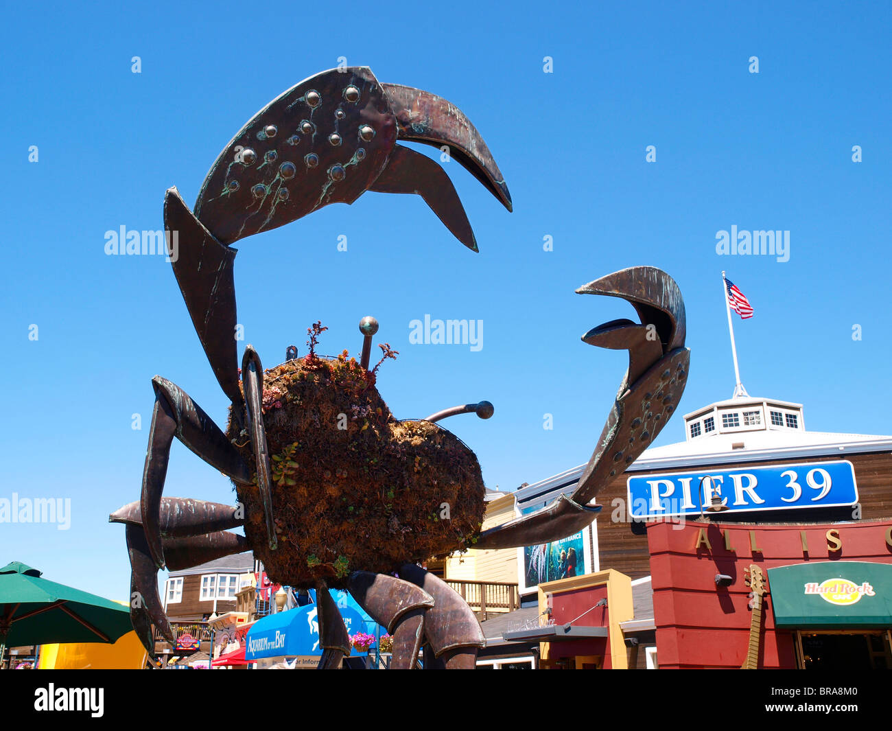 Giant crab sculpture at pier 39 fishermans wharf san for Fishing store san francisco