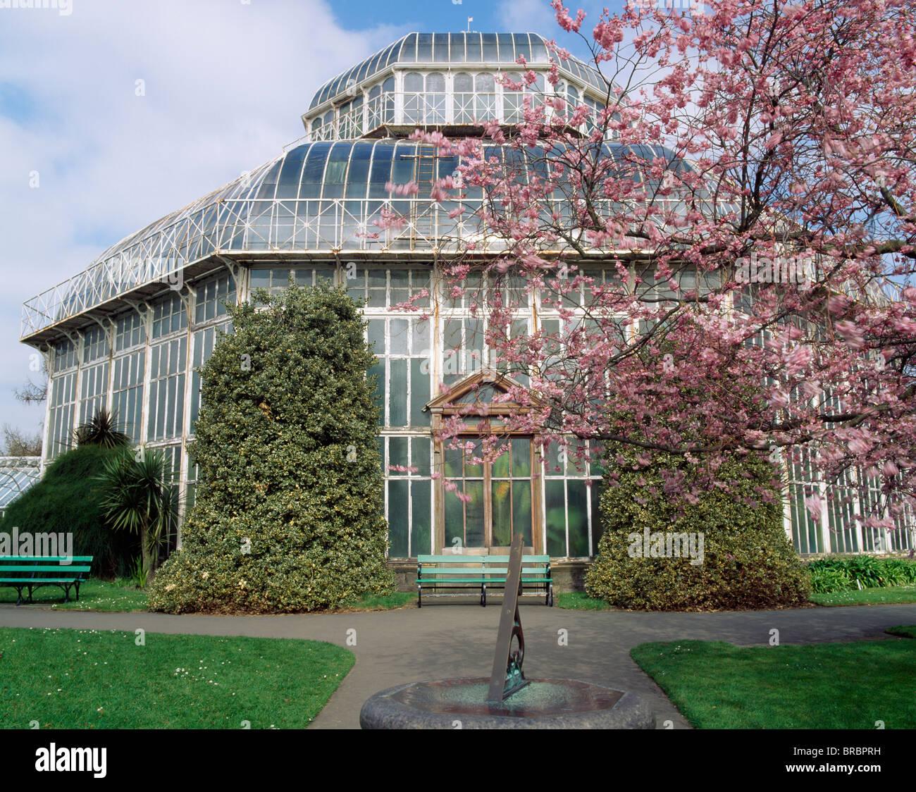 Palm House, National Botanic Gardens, Glasnevin, County Dublin, Ireland    Stock Image