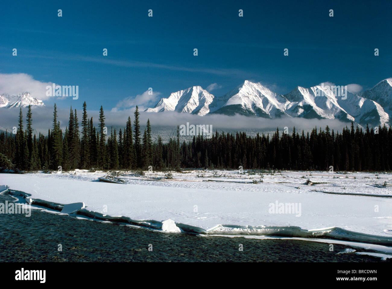 Canadian rockies kootenay national park british columbia canada canadian rockies kootenay national park british columbia canada kootenay river and mitchell range rocky mountains winter sciox Image collections