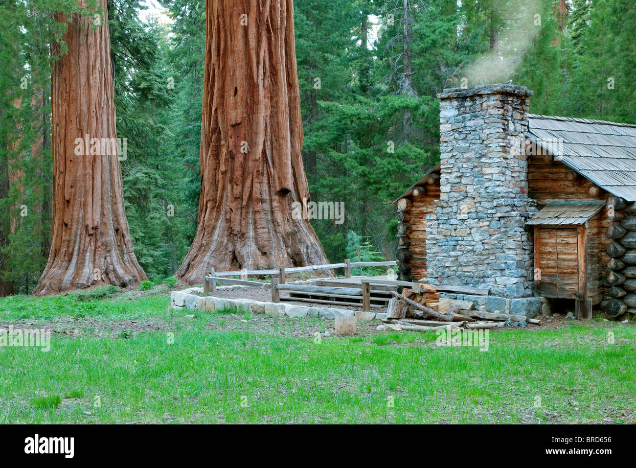 Mariposa grove museum with giant sequoia redwood trees for Log cabin sequoia national park