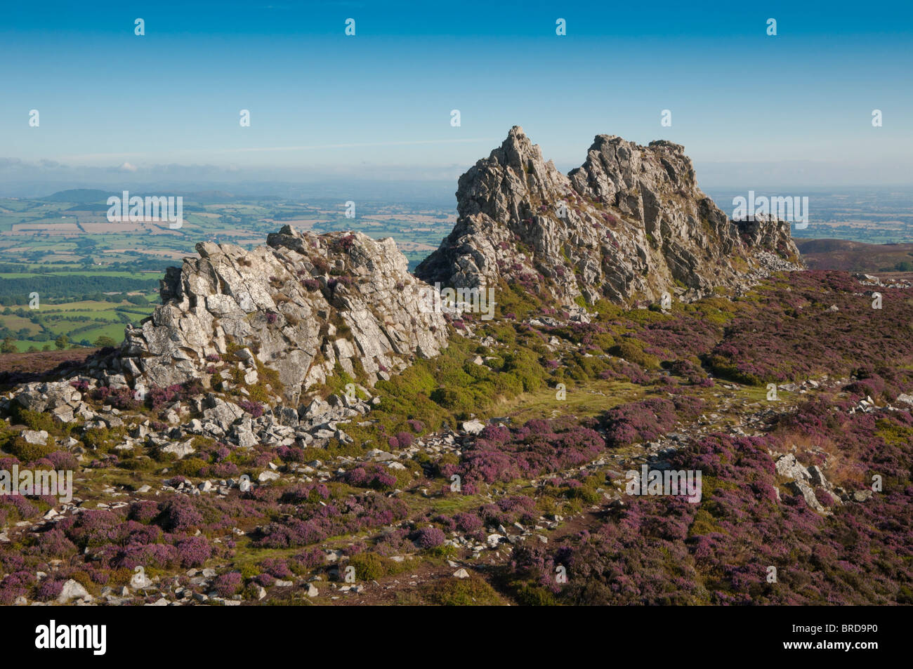 The Stiperstones Is A Rocky Outcrop In The County Of