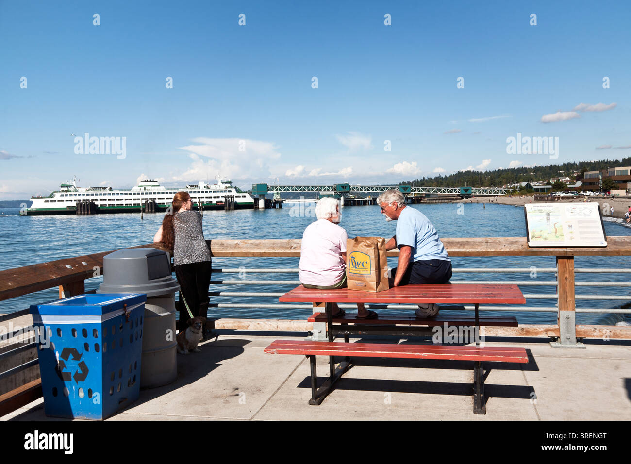 Senior Couple Perched On Top Of Picnic Table Enjoy Brown Bag Picnic As  Dogwalker Looks At View U0026 Ferry Leaves Pier In Distance