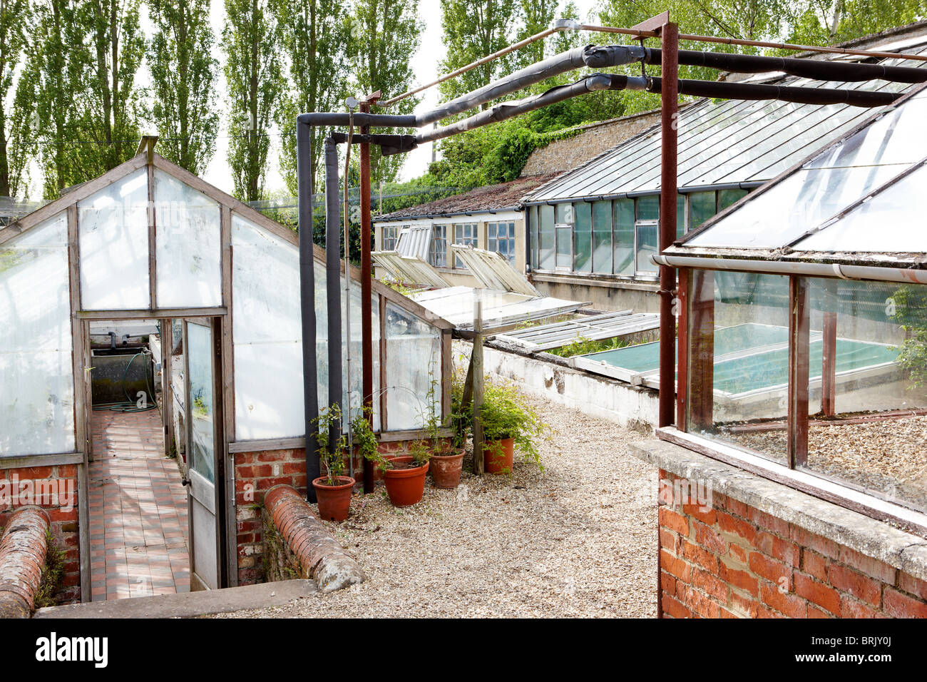 Victorian Kitchen Old Green Houses Walled Victorian Kitchen Garden Stock Photo