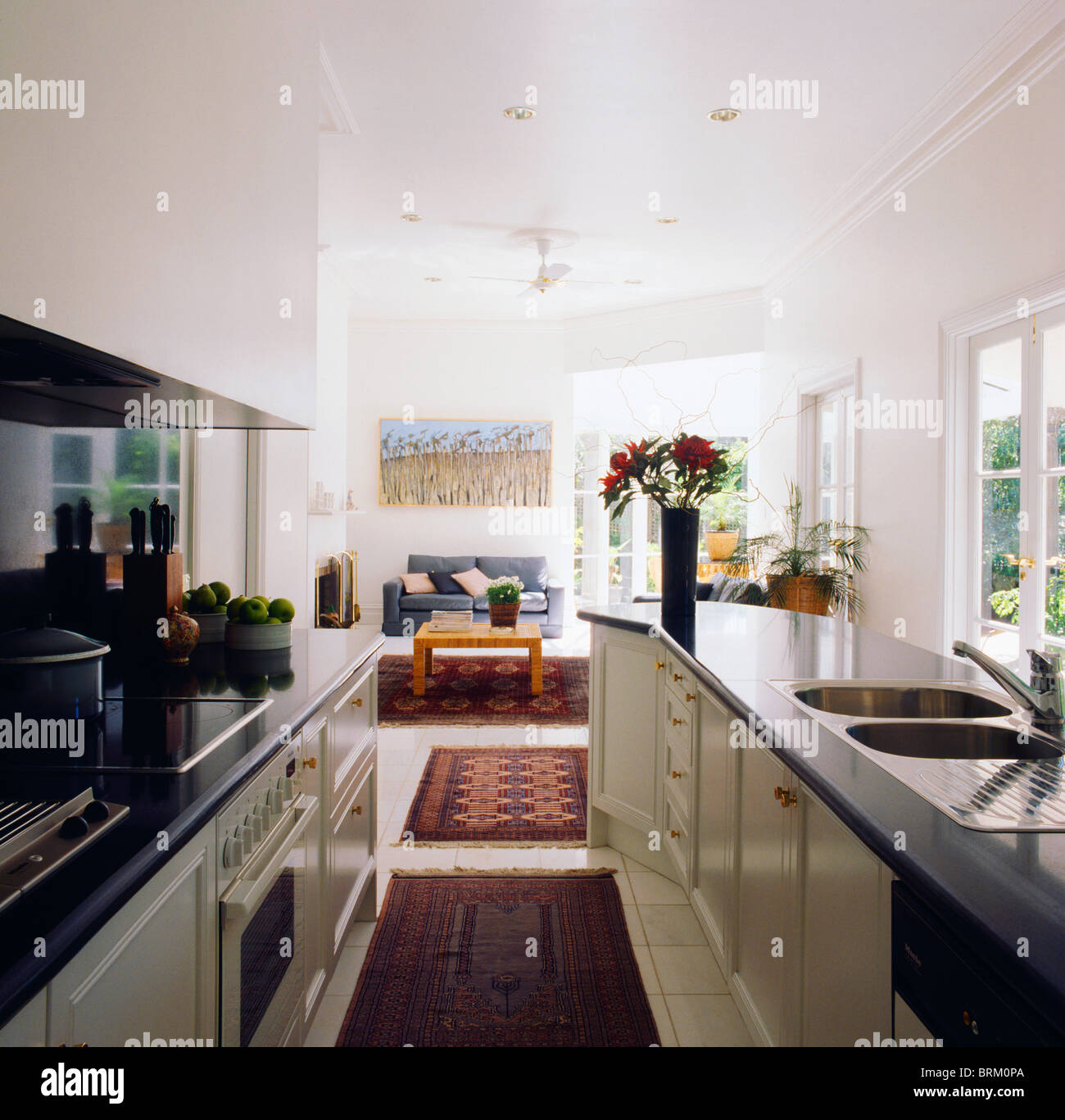 Rugs on floor in open-plan white galley kitchen with black ...