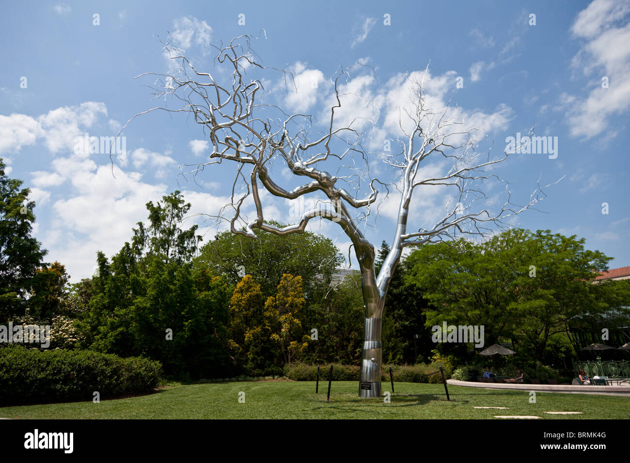 Chrome Tree In National Gallery Of Art Sculpture Garden Stock Photo Royalty Free Image