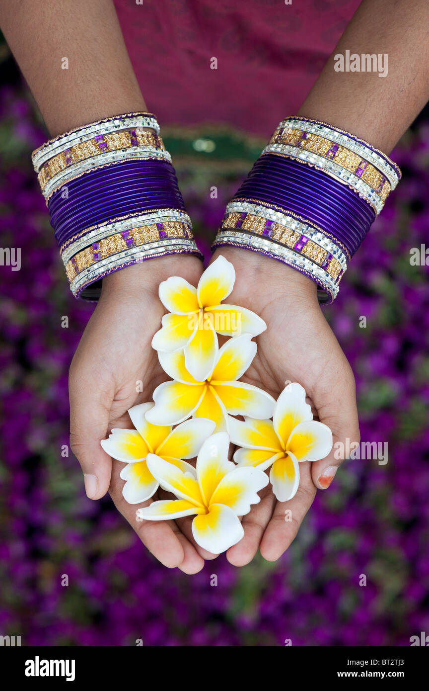 Indian girls hands with bangles holding frangipani flowers. India ...