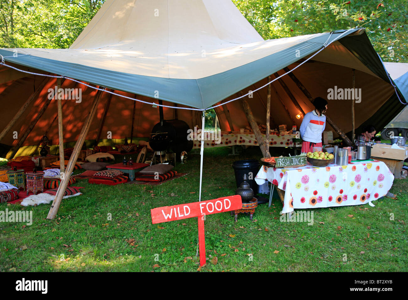 Decorative Food Tents Outdoor Party And Picnic Tent Protect & Food Tent For Picnic - Best Tent 2018
