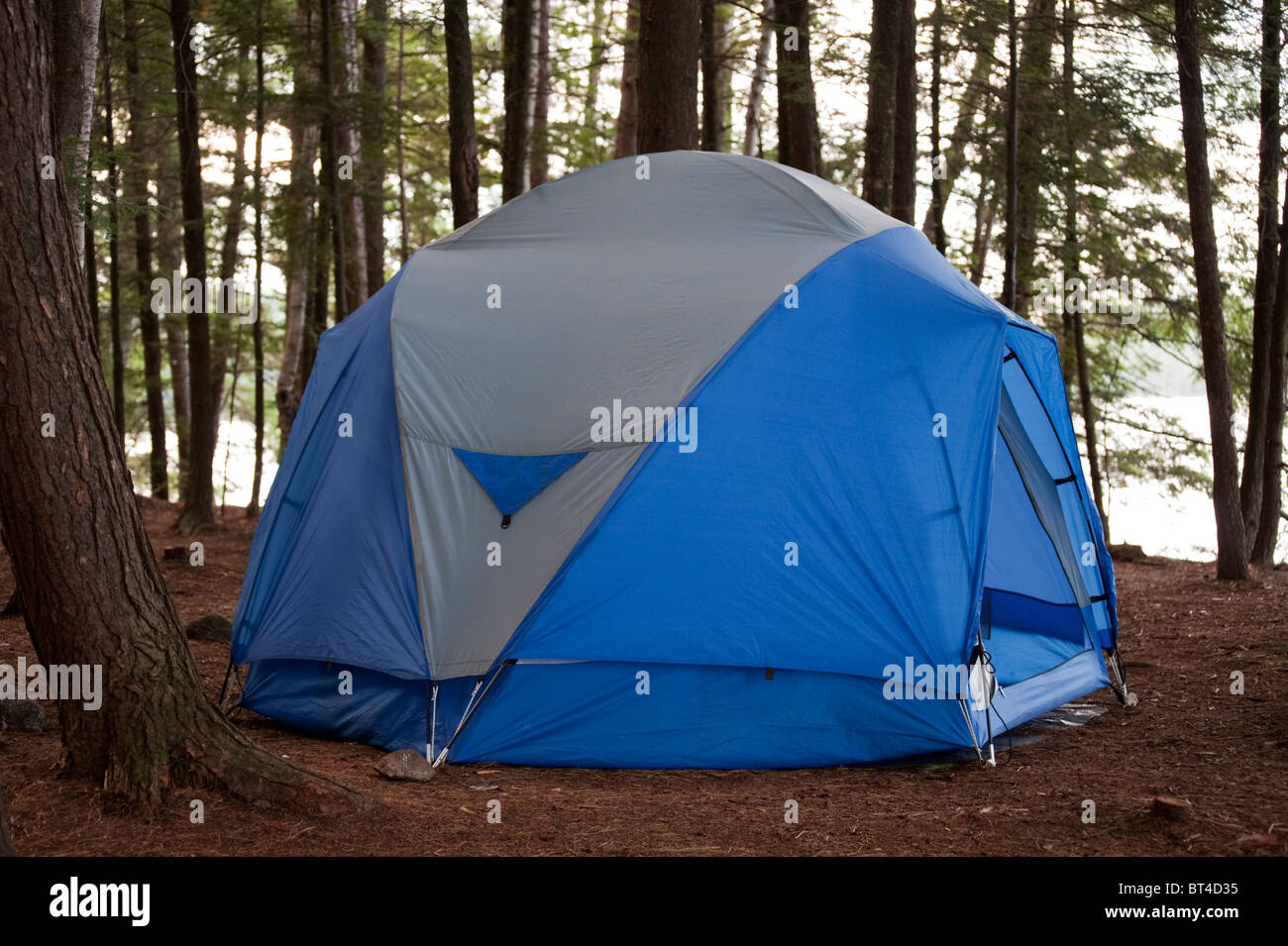 A large dome tent is pitched amidst pine trees by Killarney Provincial Parku0027s David Lake & A large dome tent is pitched amidst pine trees by Killarney Stock ...