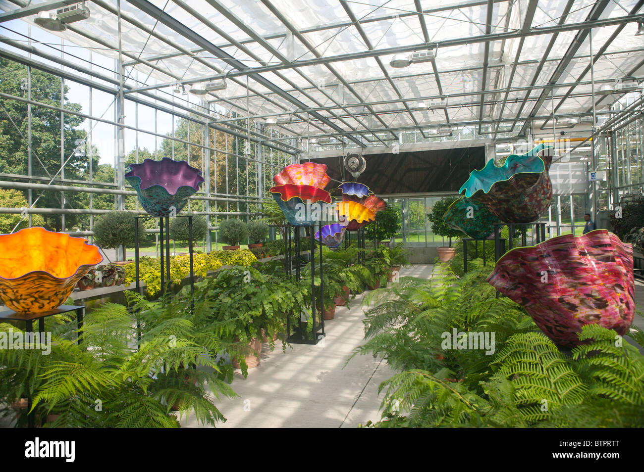 The Artwork Of Glass Artisan Dale Chihuly On Display At The New York Stock Photo Royalty Free
