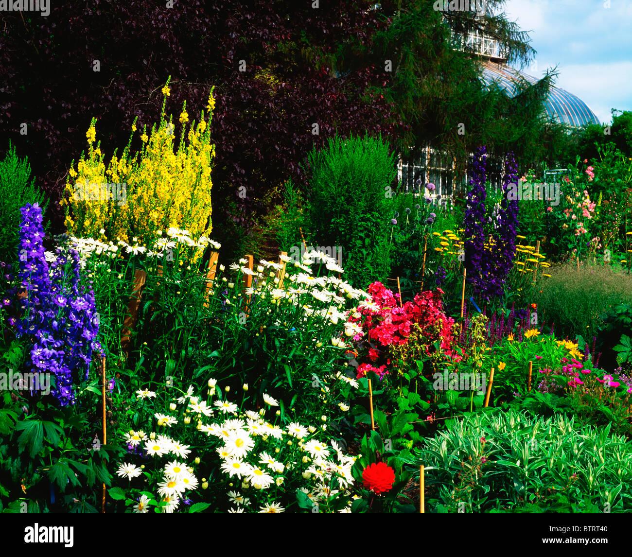 Irish National Botanic Gardens, Dublin, Co Dublin, Ireland; Garden   Stock  Image