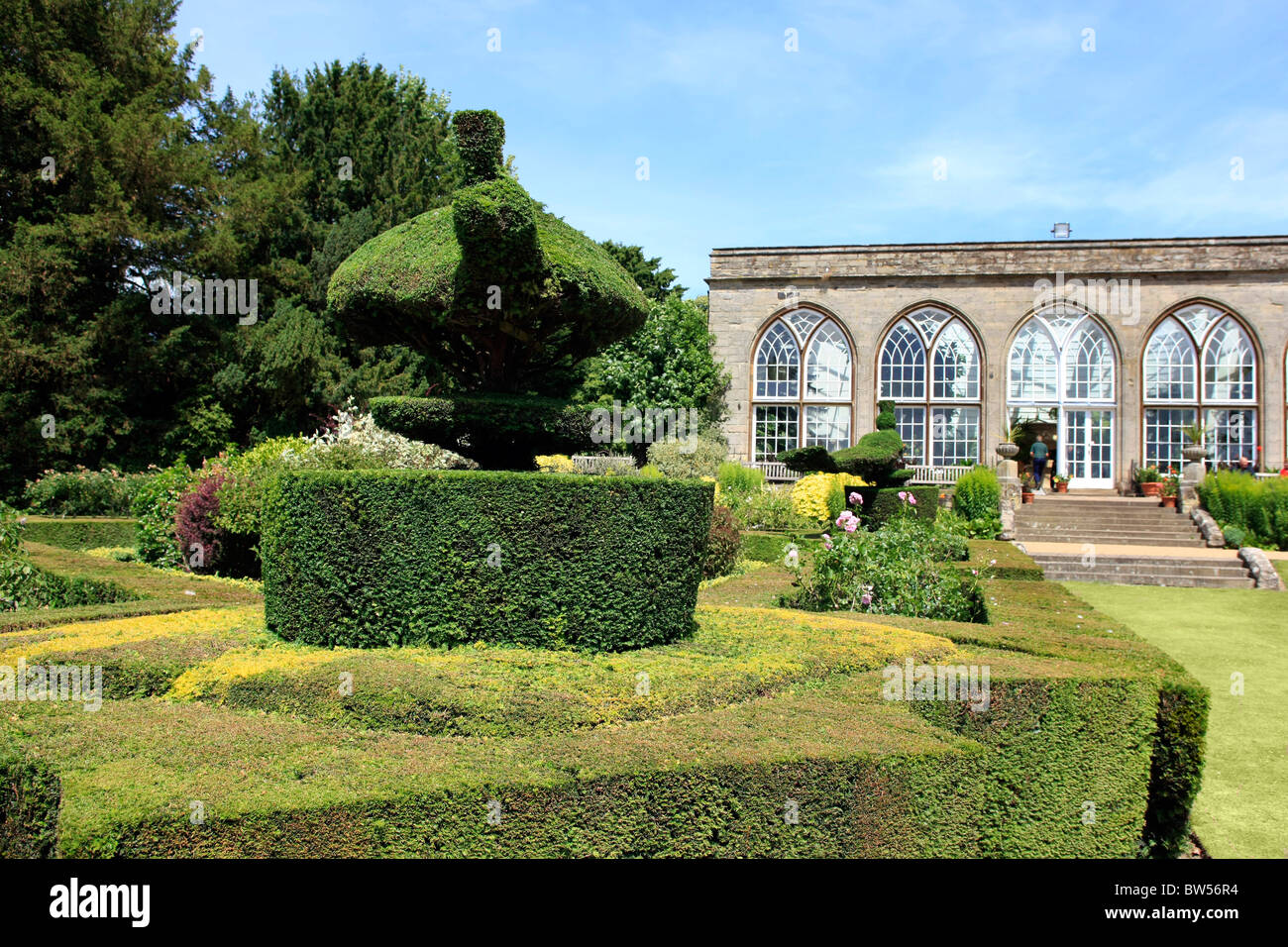 Topiary Designs Part - 44: Stock Photo - The Box Privet Hedges And Topiary Designs In The Orangery At  Warwick Castle