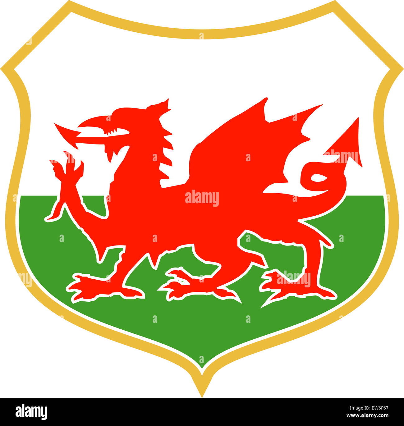 Illustration of a red welsh wales dragon with shield emblem coat illustration of a red welsh wales dragon with shield emblem coat of arms in background buycottarizona