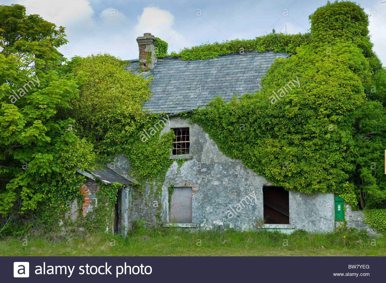 Derelict Cottage For Sale In Need Of Renovation Covered