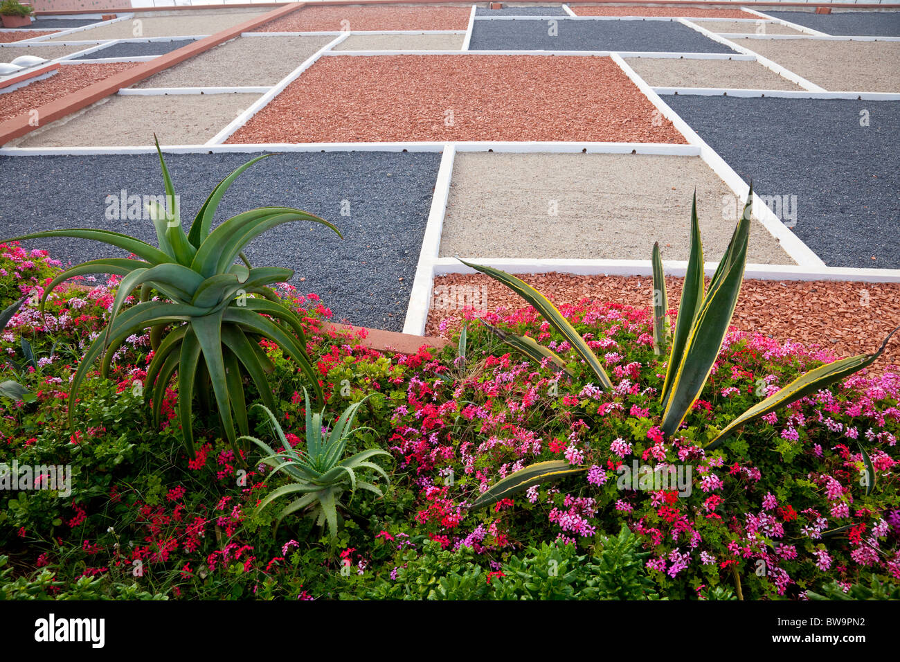 Stock Photo   Tropical Vegetation And Flowers With A Gravel Roof Pattern On  The Corniche In Casablanca, Morocco