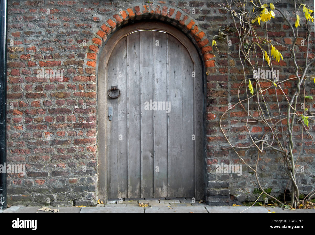969 #7E5E4D Old Arched Wooden Door In Brick Wall Stock Photo Royalty Free  save image Arch Doors Exterior 39771300