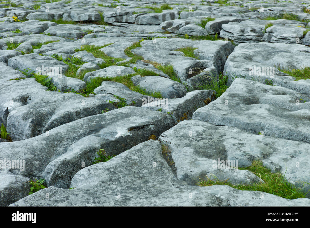 karst landscapes Karst is associated with soluble rock types such as limestone, marble, and  gypsum in general a typical karst landscape forms when much of.