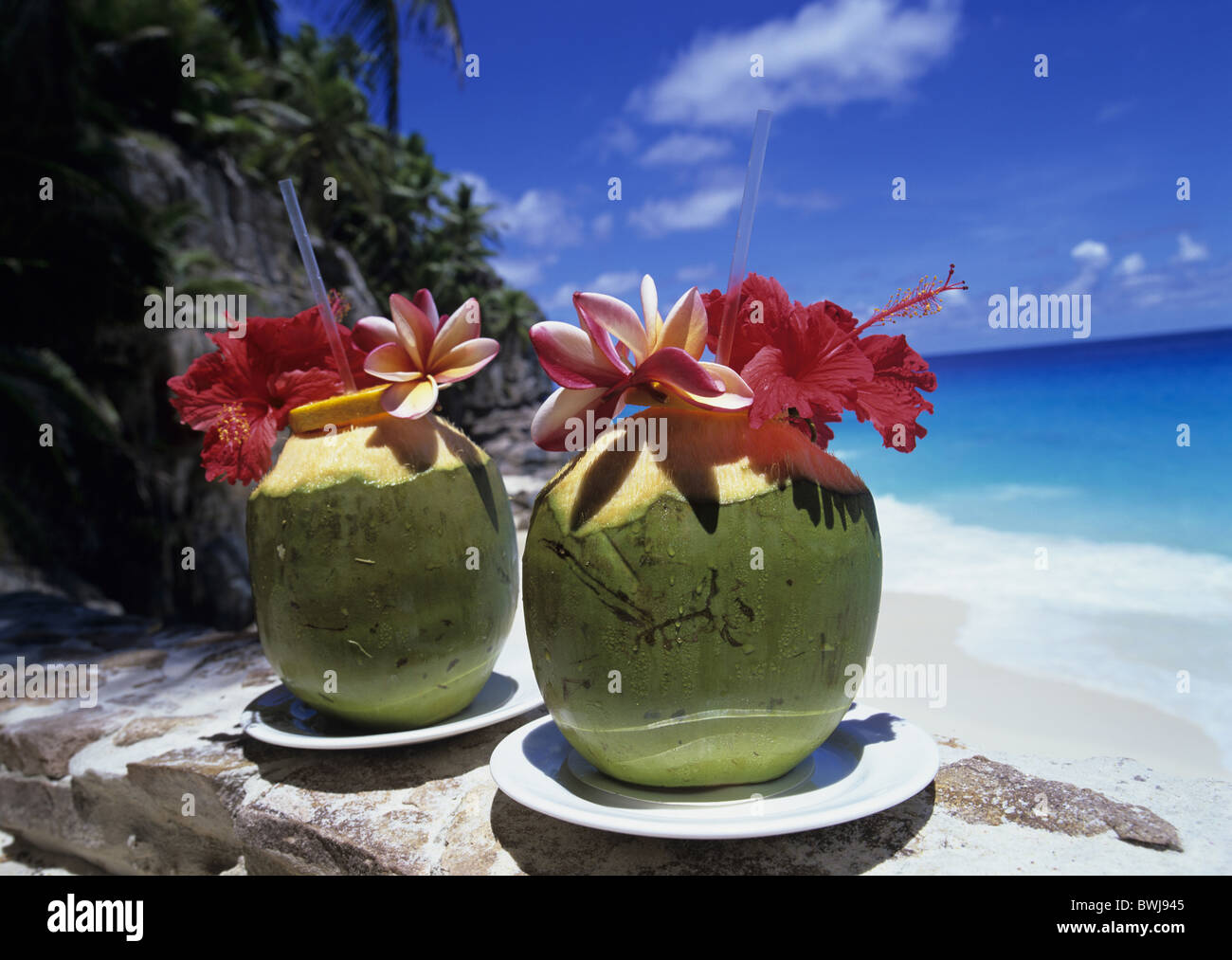 Two Coconut Drinks Blossoms Food Catering Palm Tree Beach Seashore Sand Seychelles Indian
