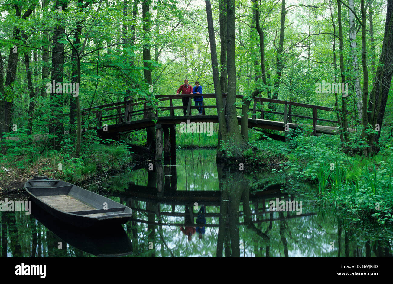 europe germany brandenburg spreewald small channel near lehde stock photo royalty free. Black Bedroom Furniture Sets. Home Design Ideas