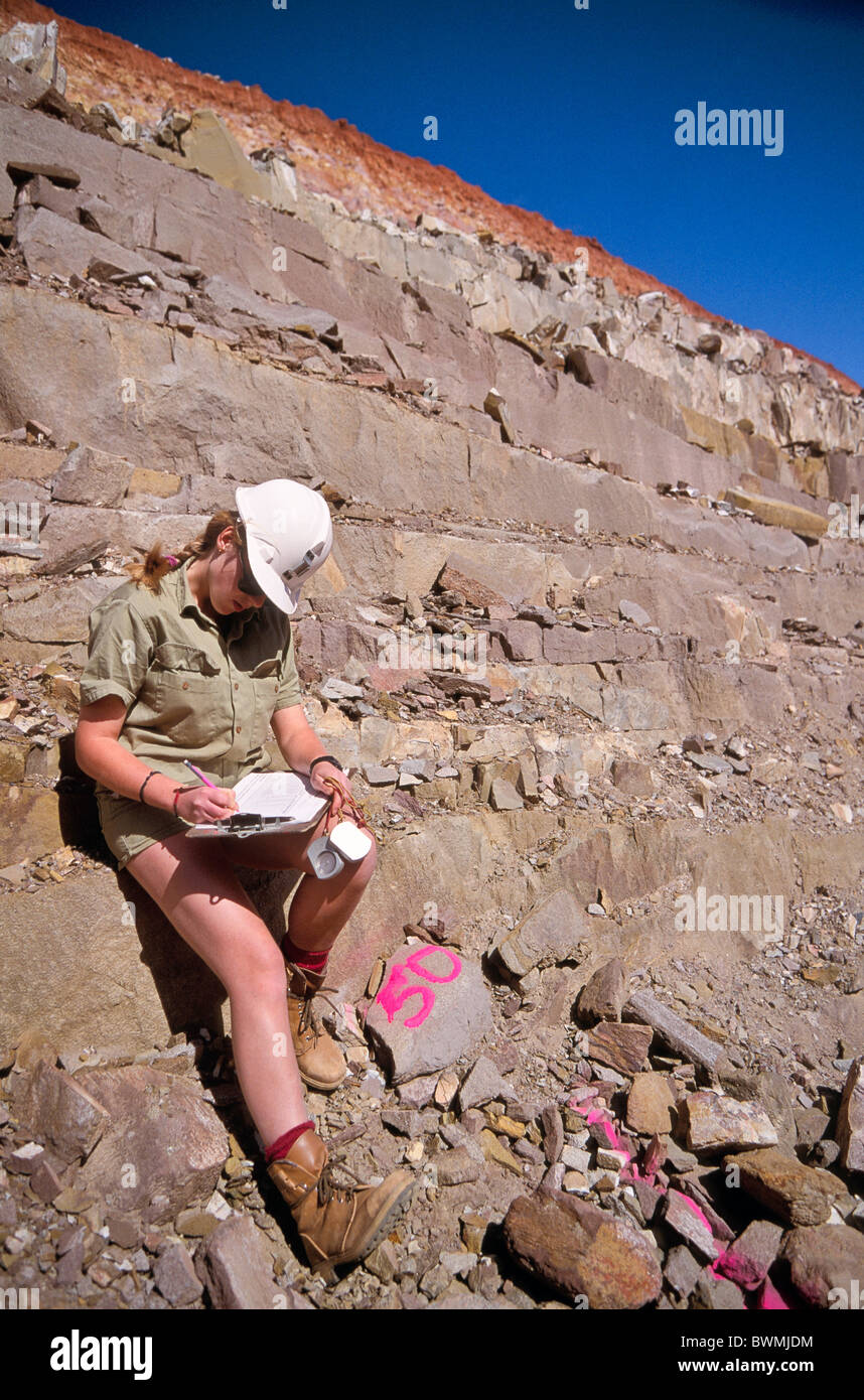 Geologists, FIFO work practices and job satisfaction ...