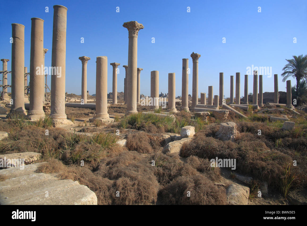 egypt north africa hermopolis magna travel trip african