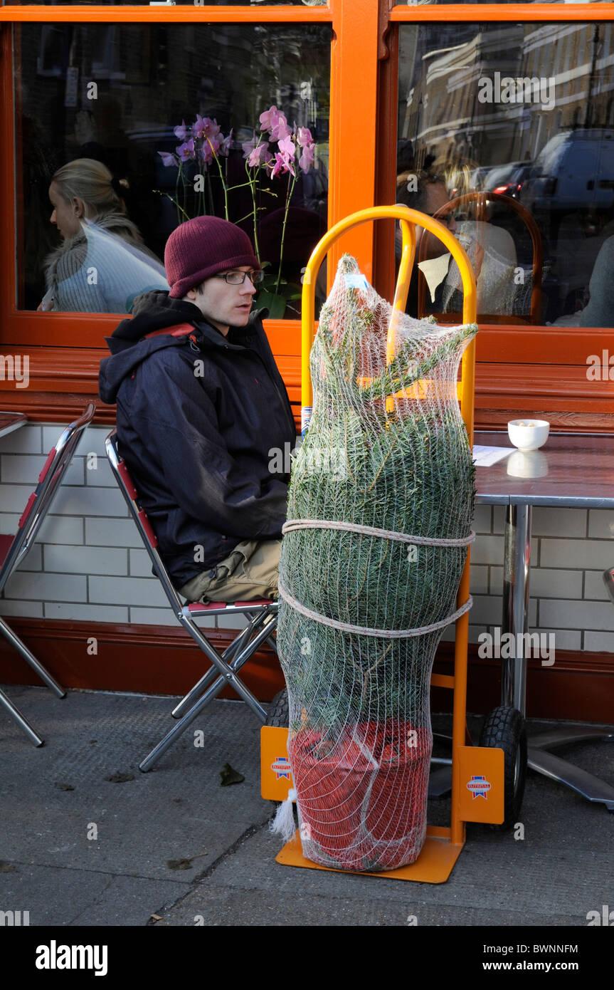 Uk Christmas Trees For Sale