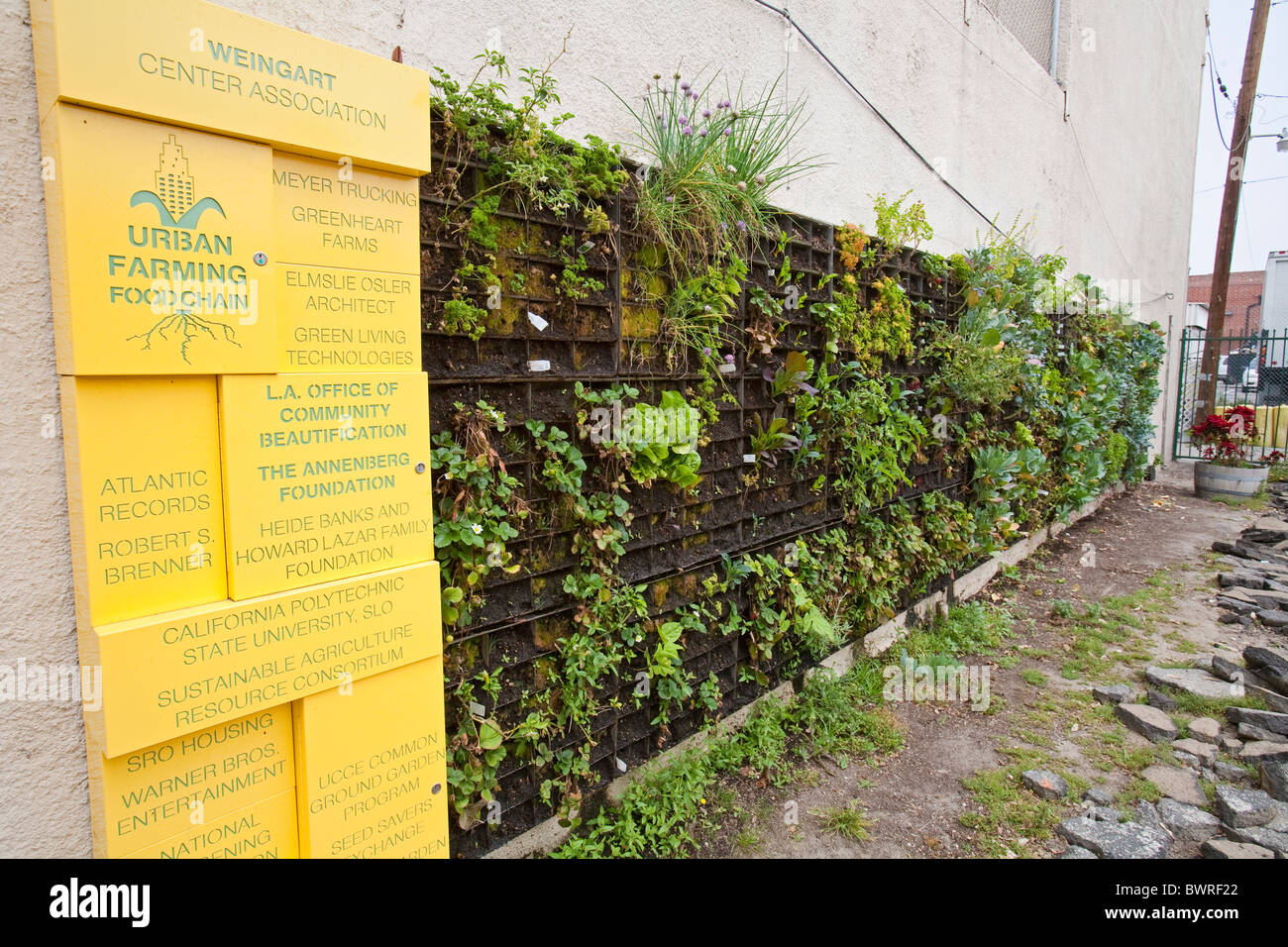 The Edible Garden wall vertical garden created by Urban Farming