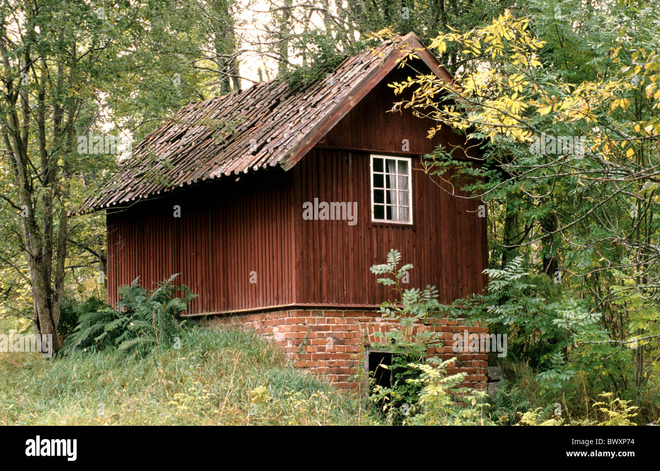 Stock photo timber house wooden hut forest hut red brown wood forest sweden europe vastmanland near frohholmen hut