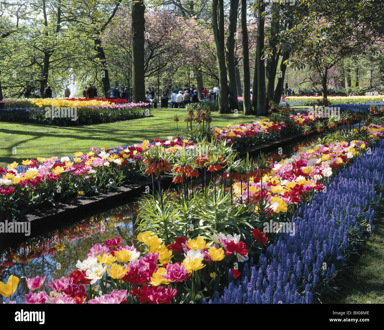 visitor flowers keukenhof spring garden holland lisse people
