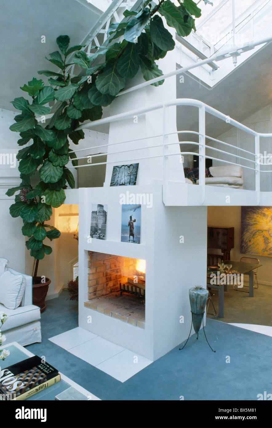 Mezzanine Loft Conversion tall climbing green houseplant beside fireplace in modern loft