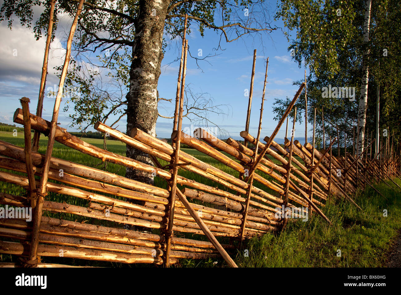 Traditional finnish wooden split rail or roundpole fence made of stock photo traditional finnish wooden split rail or roundpole fence made of wood laths finland baanklon Gallery