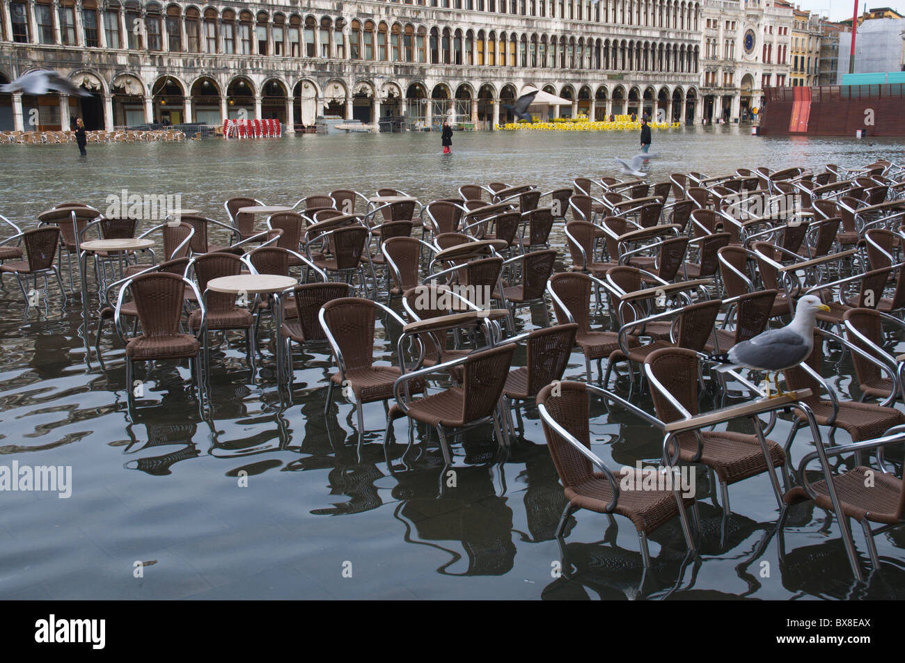 Tide tables stock photos tide tables stock images alamy cafe chairs and tables under water piazza san marco during high tide floods san marco district nvjuhfo Choice Image