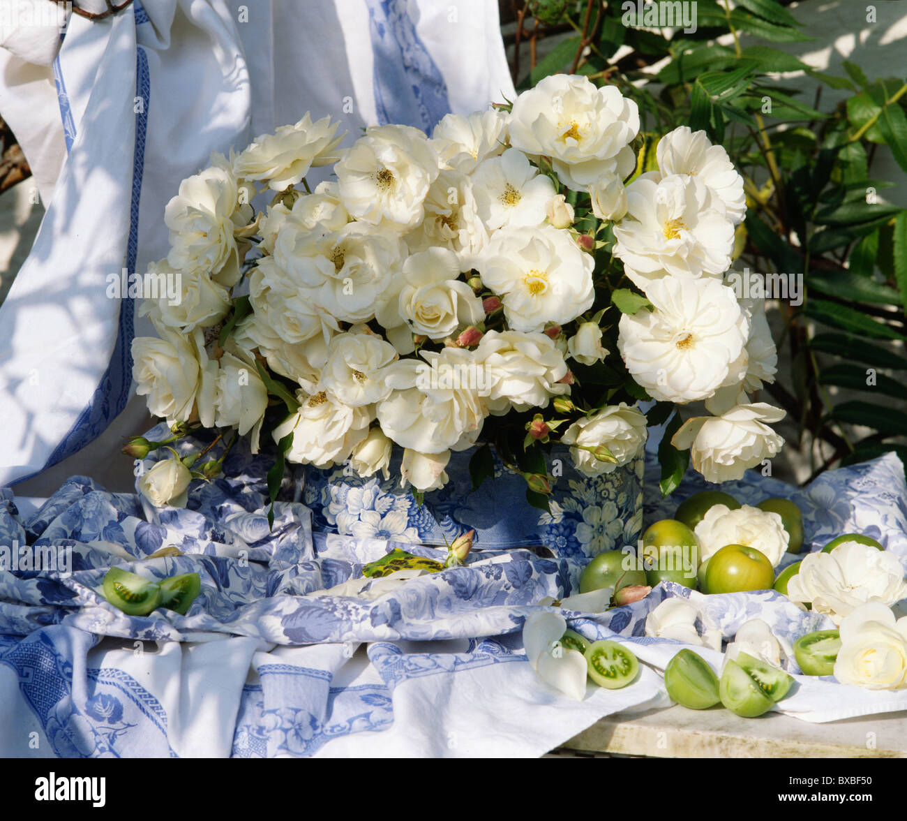 Still life of vase of white roses on garden table against blue still life of vase of white roses on garden table against bluewhite draped fabric reviewsmspy
