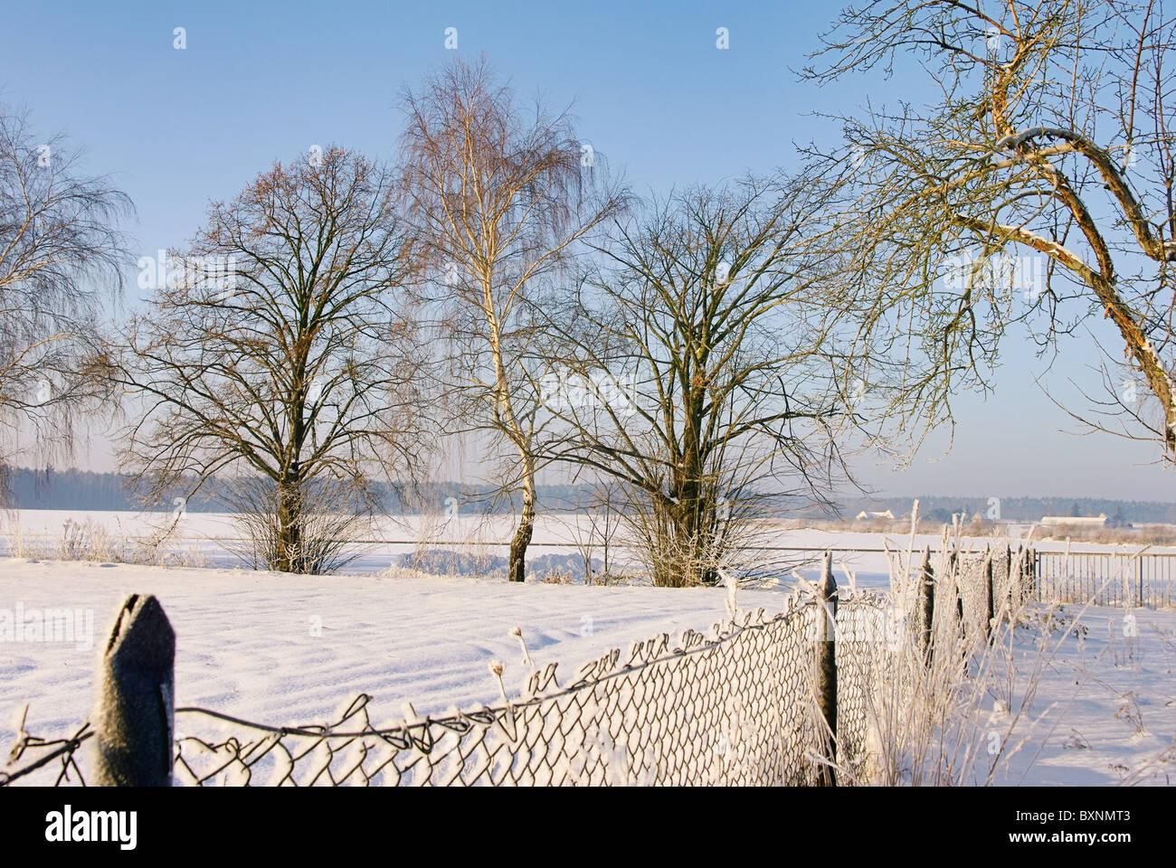 Garten Im Winter garten im winter garden in winter 16 stock photo royalty free