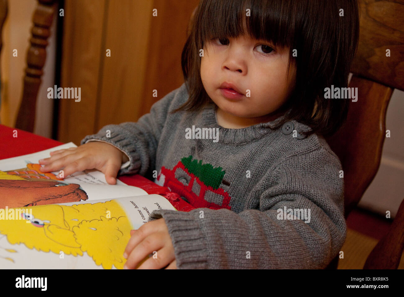a two-year-old filipino/white boy looks at a sesame street book at