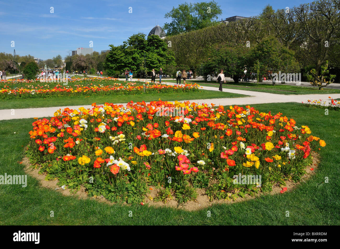 jardin des plantes botanical garden paris le de france france stock photo royalty free. Black Bedroom Furniture Sets. Home Design Ideas