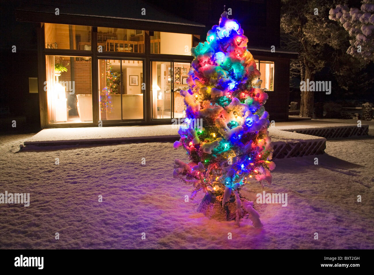 an outside christmas tree decorated with ornaments after a new snow - Outside Christmas Tree