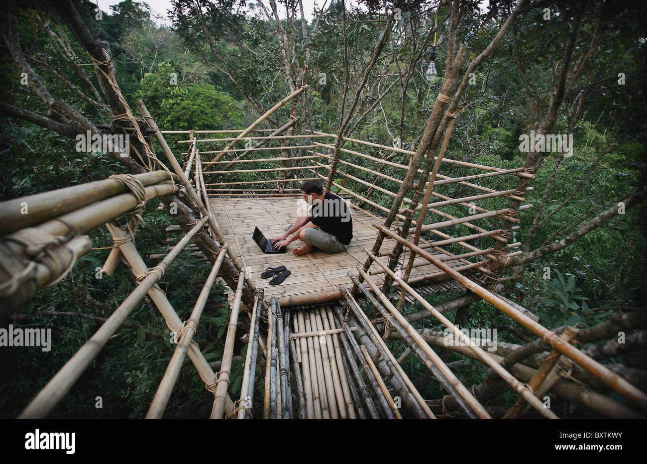 Man Using A Laptop In A Remote Tribal Village On Bamboo Tree Top Canopy Platform In Forest & Man Using A Laptop In A Remote Tribal Village On Bamboo Tree Top ...