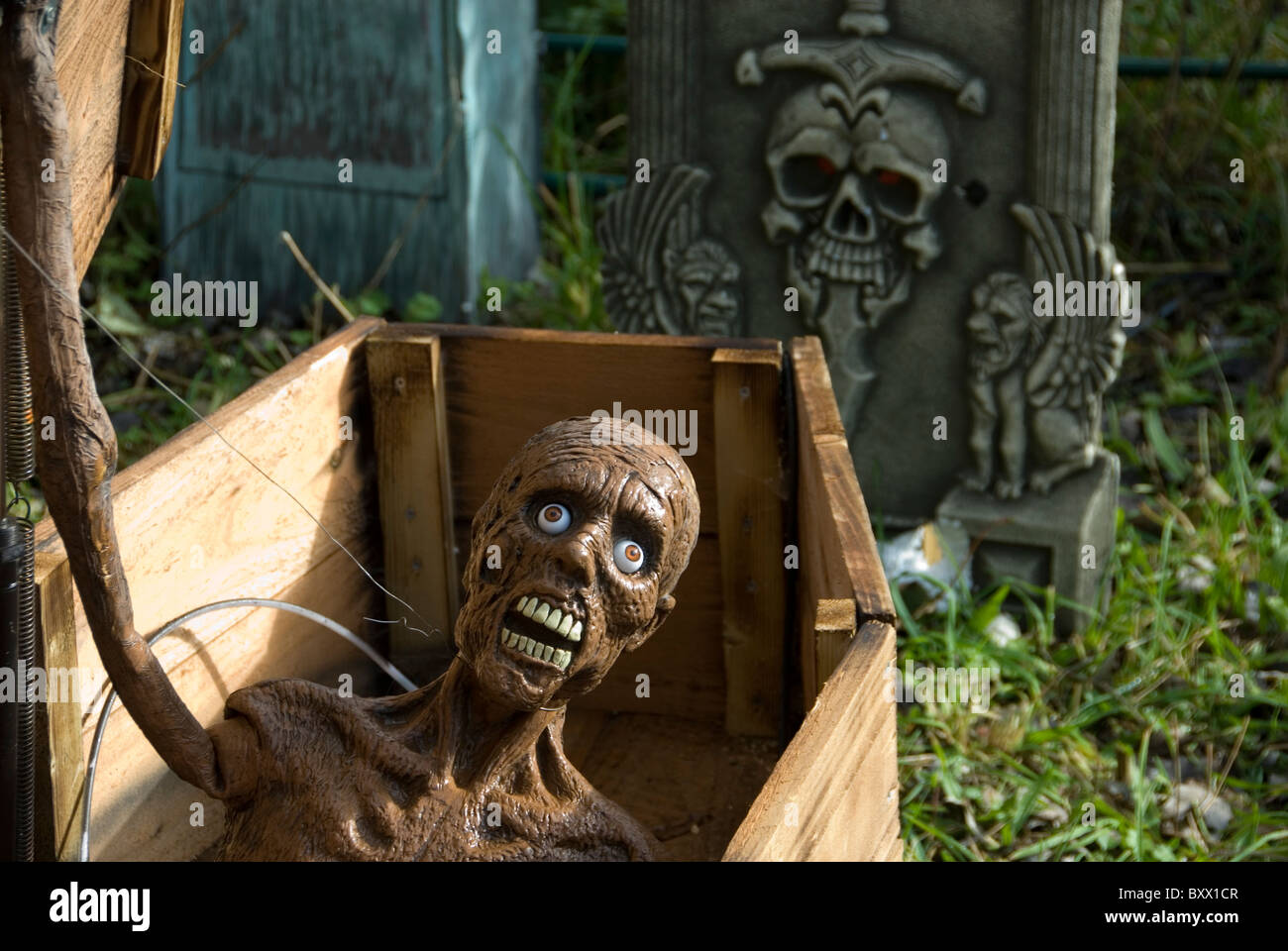 close up on spooky face of living dead man opening coffin halloween decoration