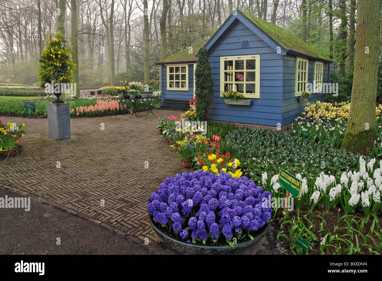small cottage flower shop keukenhof gardens lisse netherlands stock photo royalty free image. Black Bedroom Furniture Sets. Home Design Ideas