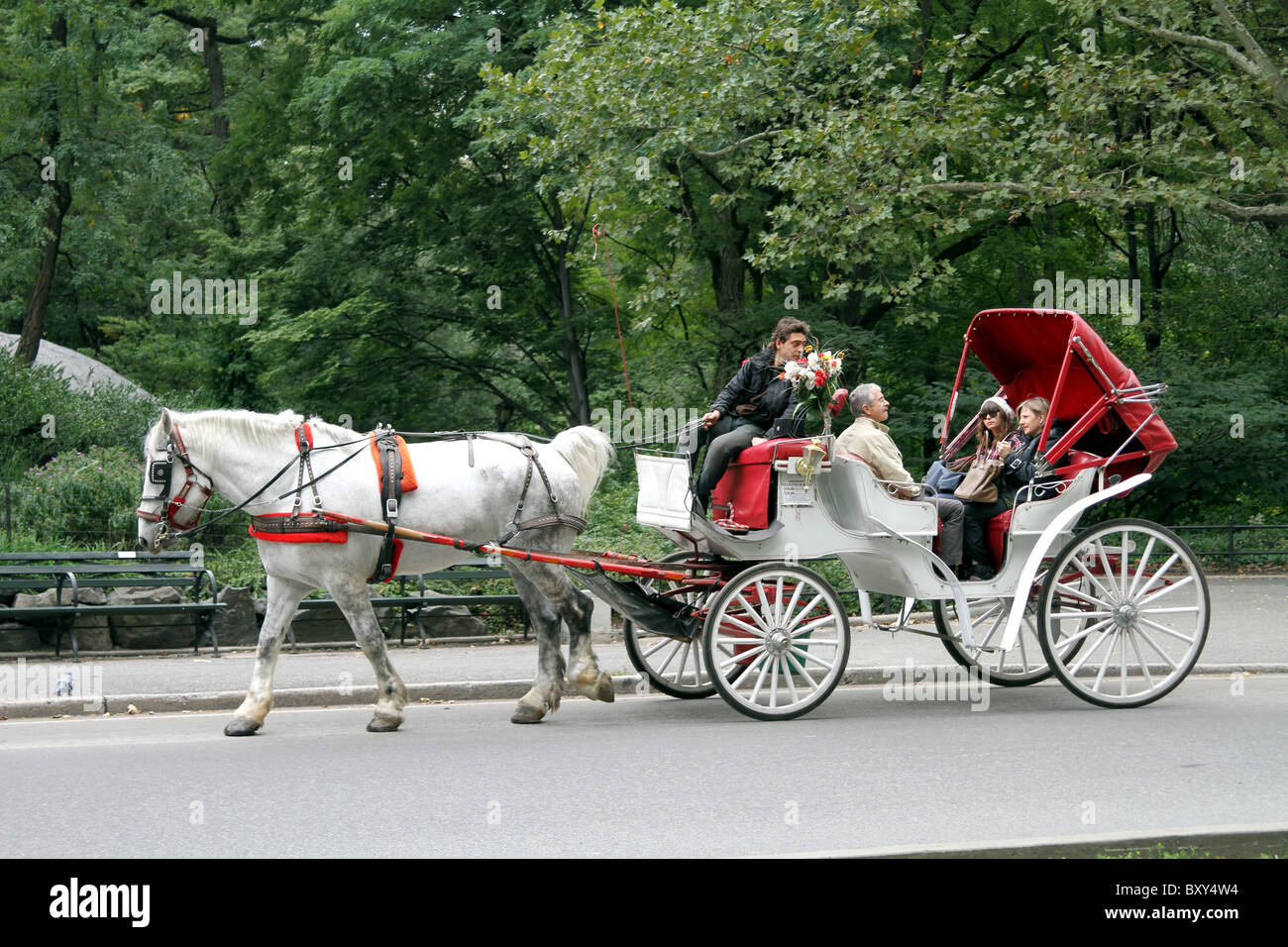 horse drawn carriage ride in central park in new york america stock photo royalty free image. Black Bedroom Furniture Sets. Home Design Ideas