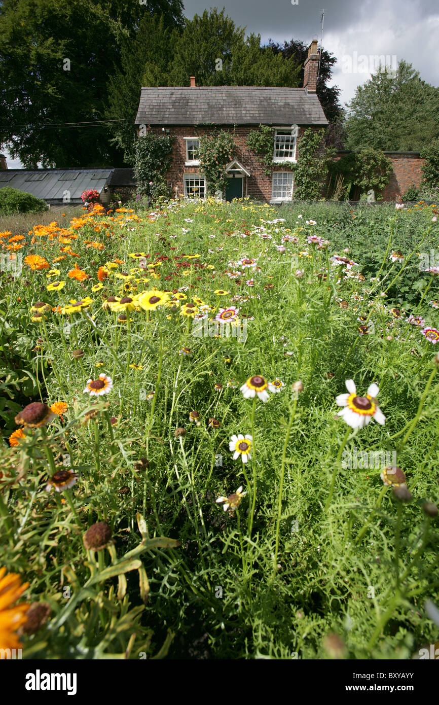 Walled Kitchen Garden Rode Hall Country House And Gardens The Walled Kitchen Garden