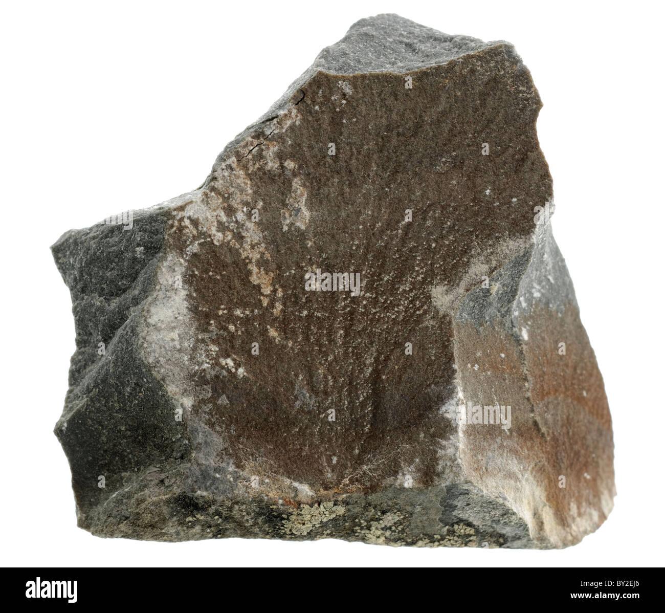 greywacke sandstone sedimentary rock sample stock photo