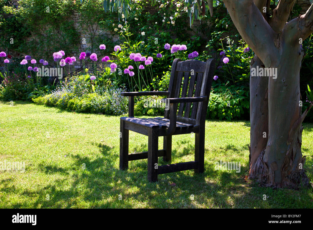 A Wooden Seat In A Shady Corner Under A Tree In An English