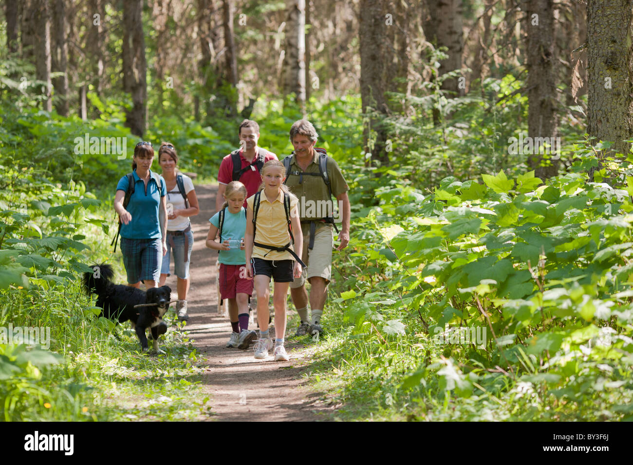Canada British Columbia Fernie Family And Dog Hiking In Forest