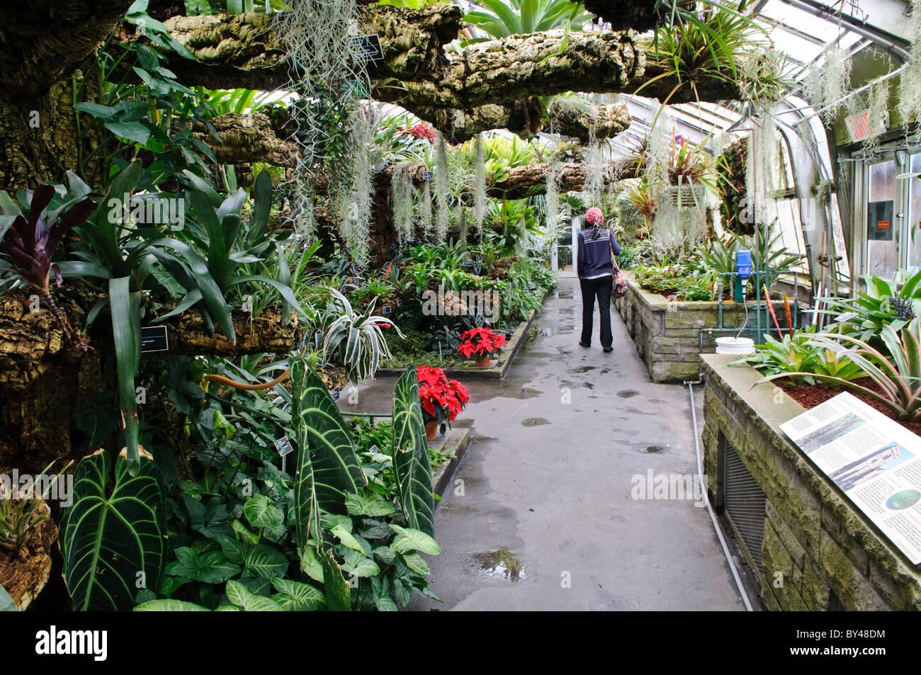 Inside montreal 39 s botanical garden one of the world 39 s for Indoor botanical gardens